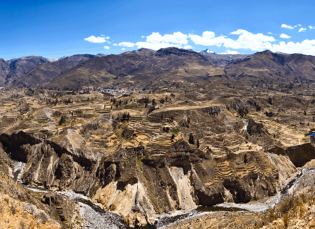 2D 1N Colca Canyon Tour from Arequipa transfer to Puno